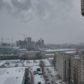Аренда, снять апартаменты, Однокомнатная квартира, ул. 40 лет Октября, д. 8 в Воронеже